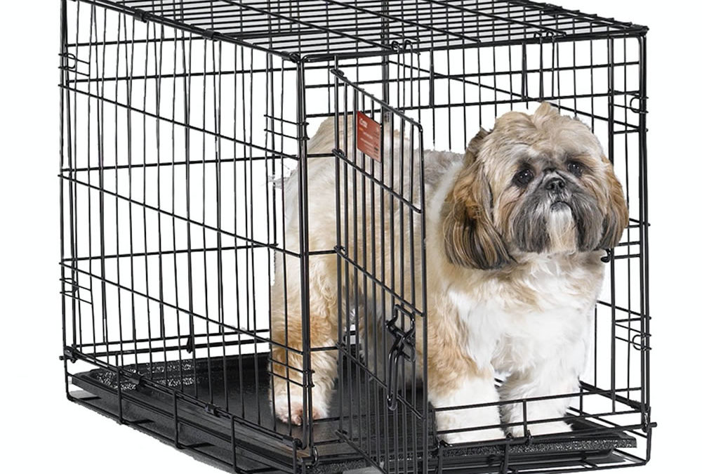 Midwest iCrate Pet Crates – #1 Amazon Best Seller