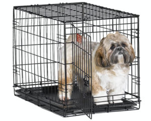Midwest-iCrate-Pet-Crates