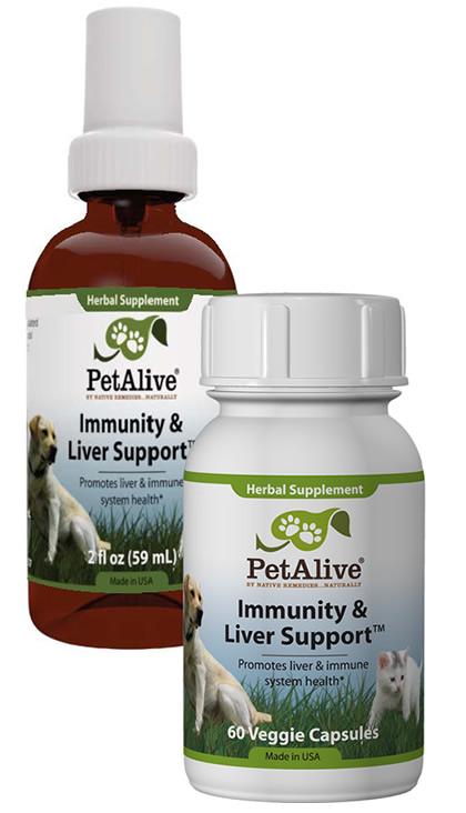 Dog Liver Supplement Support