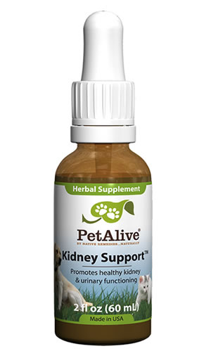 Dog kidney failure treatment by PetAlive