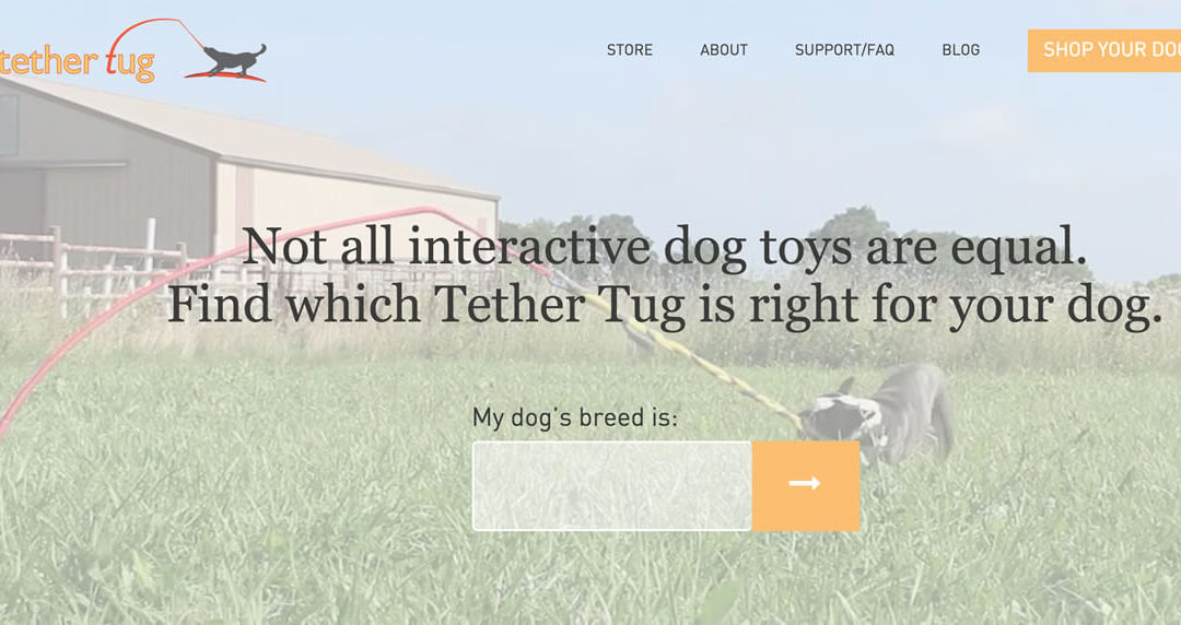 Tether Tug Dog Toy – Interactive Dog Toys for Playful Pups!