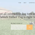 Tether Tug Interactive Dog Toy