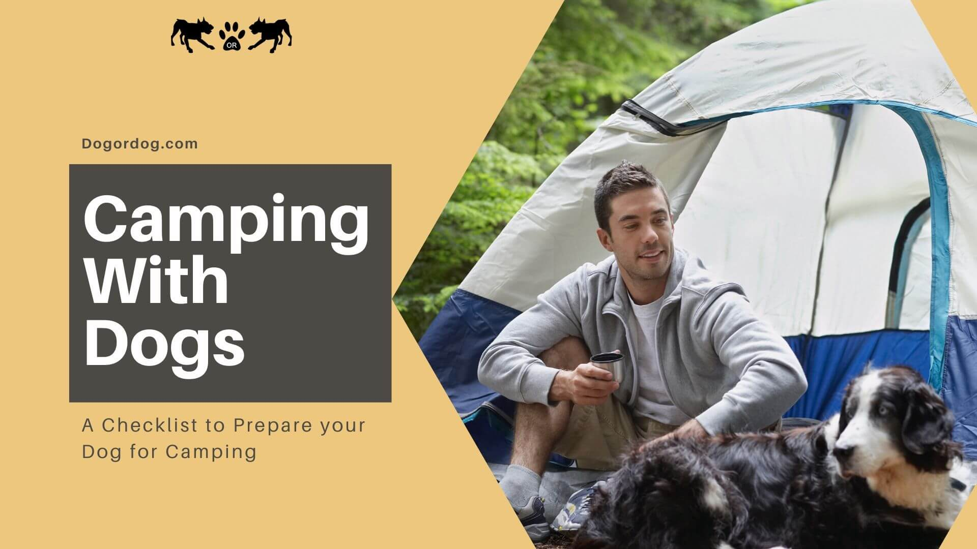 The Ultimate Guide to Camping With Dogs