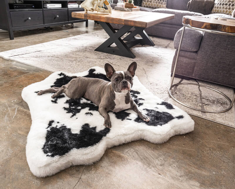 PupRug Black Faux Cowhide Memory Foam Bed
