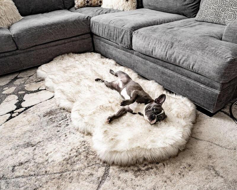 PupRug Runner Faux Fur Memory Foam Bed - Curve